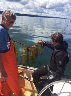 Photo credit: Puget Sound Restoration Fund